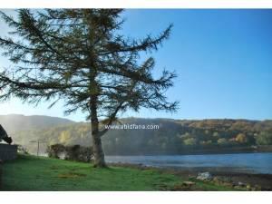 Dari dalam penginapan di Linnhe Holiday Park, inilah pemandangan yang dapat dilihat